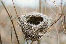 The Crafty Nest Brand Design Board