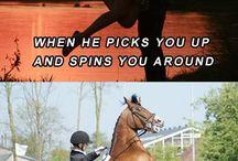 Hästskoj