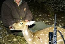 Deer Hunting Gear / by Deer & Deer Hunting