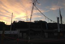 Sunrise / 龍神総宮社の朝日の写真