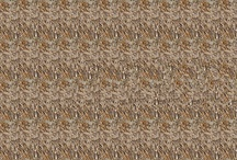 My Stereograms