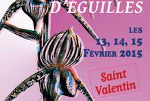 Orchidées Eguilles 2015 / Le rendez-vous des passionnées d'orchidées, tillandsias et épiphytes en tout genre !