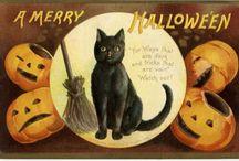 Spookfest / All things Halloween