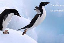 mr-clim.fr fournisseur d'air frais / Première enseigne de climatisation de véhicules à domicile et sur site. http://www.mr-clim.fr/