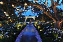 Flowers_Wedding_Preston Bailey