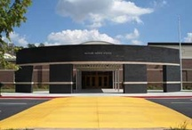 McClure Middle School / by Diane Williams