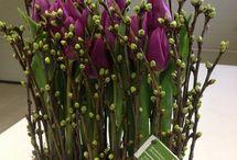Frühling Anregung