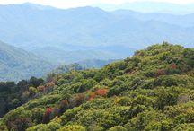 Smoky Mountains Vacation 2015 / by April Tinajero