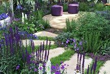 Trädgård! ❤️