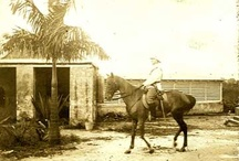 """Scenes from the novel Transfer Day / Some typical scenes from my novel """"Transfer Day"""" which takes place on the island of St. Thomas from 1916-1917 during the transfer of the Danish West Indies to the U.S."""