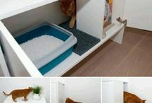 Déco - Espaces chats