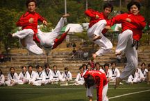 Taekwondo / This is a sport that combines self-defense and exercise. It orginated in Korea, during the 1940's