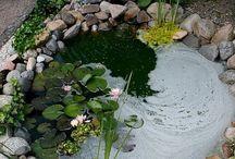 water gardends