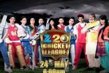 Zee 20 Cricket League