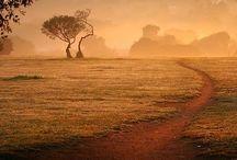Herinneringen / De kleuren van Afrika