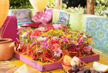 Jaipur Dreams -  Blütenträume mit Chrysanthemen