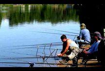 Рыбалка на донную снасть. Ловля рыбы на донку.