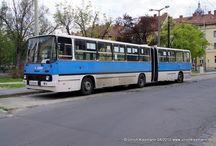Szeged - Tisza Volán Zrt. >> Ikarus 280 / Sie sehen hier eine Auswahl meiner Fotos, mehr davon finden Sie auf meiner Internetseitewww.europa-fotografiert.de.