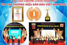 Giải thưởng Top 100 Thương Hiệu Dẫn Đầu Việt Nam
