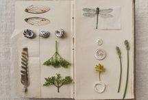 Naturbøker