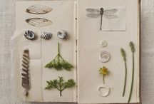Nature journaling ... TACCUINI IN NATURA