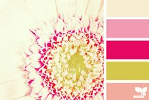 color palettes / by Monica Shuppe