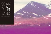Scandiland