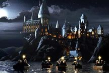 Harry Potter✨