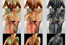 Scapula positions