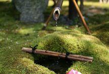 Japanese Gardens make me feel calm