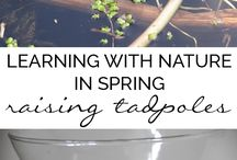 Nature Study - Year Round / Teach your children about nature using interactive activities, printables, lesson ideas, crafts and projects.