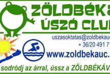 Balaton-átúszás 2015