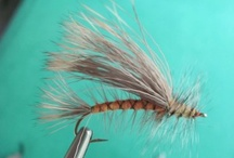 Flies / Flies, fly tying and more flies