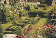 Dream gardens / Cccooooooolll