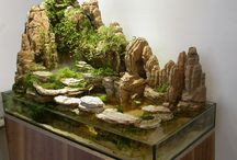 hardscape your aquarium
