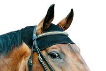 Back on Track Horse / Back on Track arbeitet mit dem Keramikstoff Welltex®. Das Welltex®-Material reflektiert die Körperwärme in Form von infraroter Strahlung - eine Energieform, die das Wohlbefinden steigert...http://arrodeooo.de/back-on-track/back-on-track-horse.html