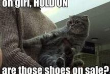 Shoe Funnies / Absolutely anything about shoes that makes me smile or laugh