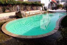 Pool Bio en Valencia, Spain. / Piscina ecológica con vegetación palustre