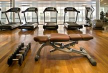 Fitness & Health / Fully equipped gymnasium with a 25-metre four-lane indoor lap pool.