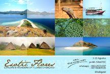 Explore 8 Wonders Of Flores, Overland [operator : Kaki Gatel] / December 24-31, 2013 Link : http://triptr.us/sZ Pantai Riung, Taman Nasional Komodo, Gunung Kelimutu, Bajawa, Waerebo, Labuanbajo, Maumere, Moni, Nilo, Sikka