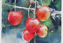 Akvarell cseresznye