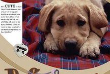 Dog Scapbook