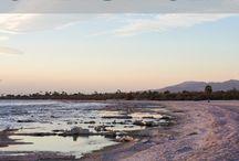 Explore the Salton Sea