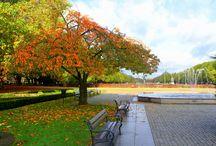 Cztery pory roku: Jesien 2013!