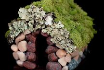 Fairy Gardening / Miniature gardens