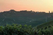 Piemonte / De regio Piemonte in Noord-Italië met de wijnstreek Langhe, Barolo & Monferrato.