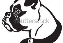 Boxerhunde