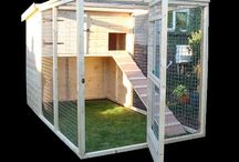 Rabbit Cage Outdoor