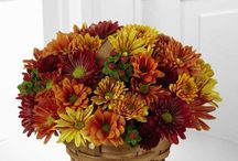 Frugal Flower Fall Flower Collection / Enjoy the warmth of the season with a bountiful harvest themed flower arrangement and allow us to make this Fall memorable. Accent your house with a beautiful floral design arranged in a vase or decorate the home of a loved one with a stunning centerpiece that can be admired by all. If you are unable to attend an autumn gathering, show your appreciation by sending a bountiful basket of fruits and gourmet treats that are sure to please.