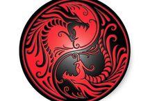 dragon jin jang